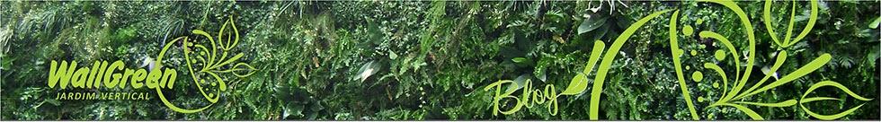 WallGreen Jardins Verticais