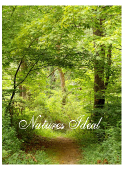 Natures Ideals Notebook