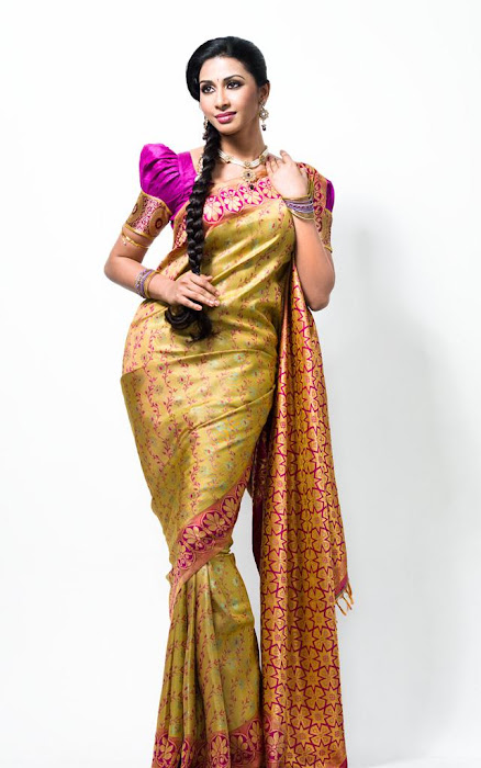gayathiri wonderful saree ad collections 2012 glamour  images