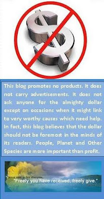 This blog's dollar policy