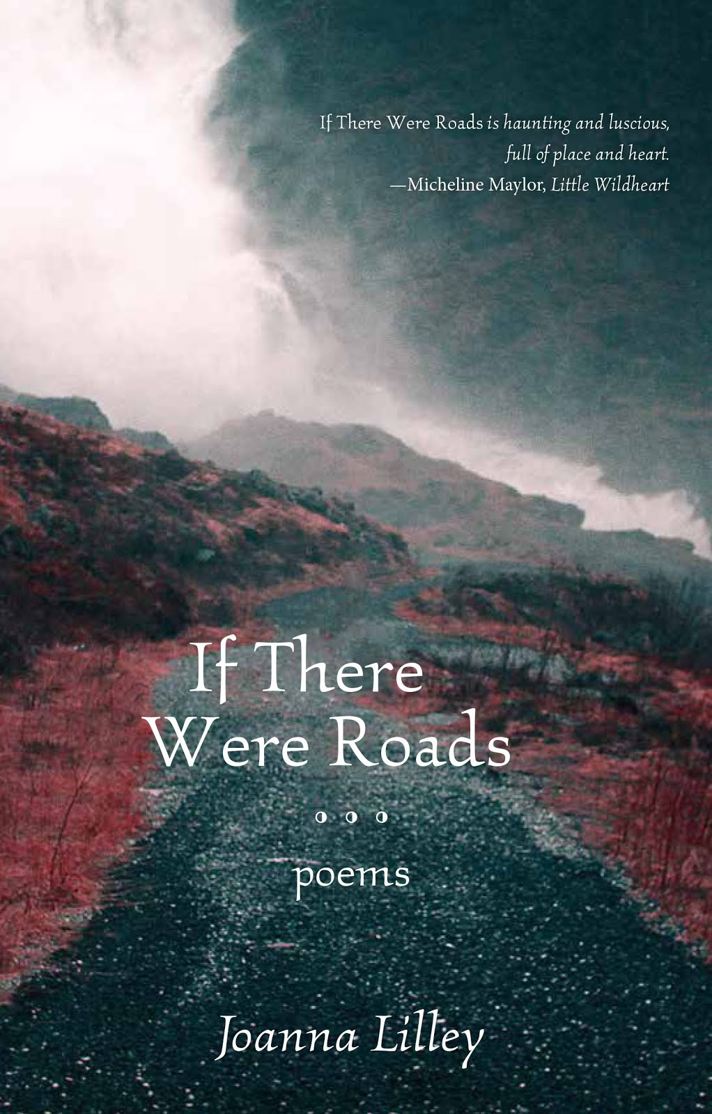 If There Were Roads is being published by Turnstone Press in April 2017