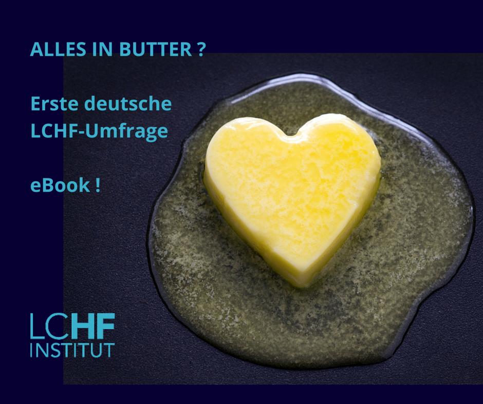 https://lchfblog.de/wp-content/uploads/sites/268/LCHF_Umfrage_eBook_Kathrin_Koehler.pdf