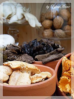 http://4.bp.blogspot.com/-U0J8fFd2HVg/UG7R4kod9DI/AAAAAAAA9ys/NgLeEwvPepY/s1600/Cueillette+de+champignons+(29)-28.JPG