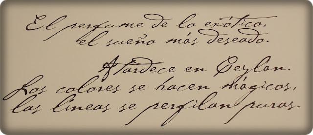 Viaje a Ceylan, de Adolfo Dominguez