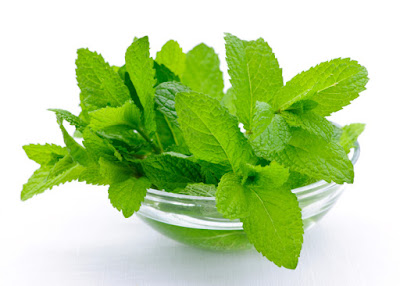 Health Benefits of Mint Leaves
