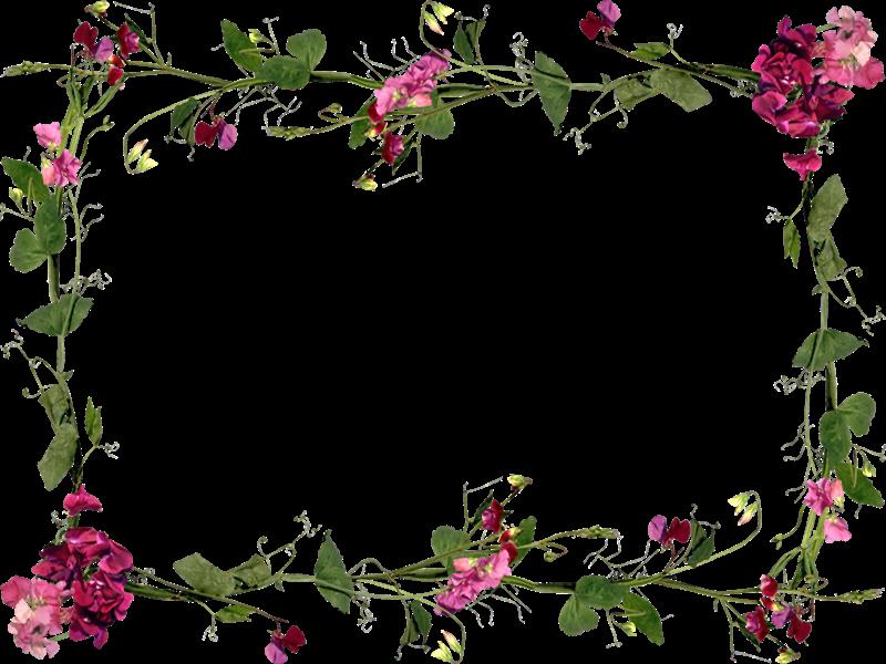 Png marcos con bellas flores - Marcos para plantas ...