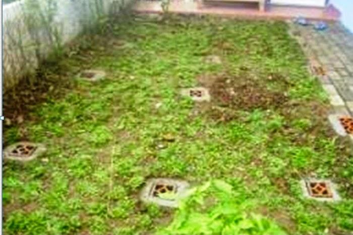 BIOPORI: Upaya kecil Pelestari Lingkungan
