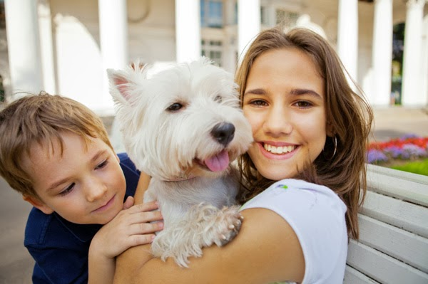 Is Your Pet Your Child? Your Dog May Think So