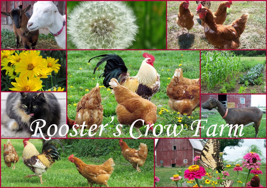Rooster's Crow Farm
