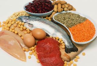 Protein-yiyecekleri