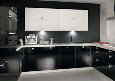 Black White Kitchen Design 2011