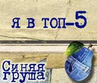 "ТОП 5 ""Синяя груша"""