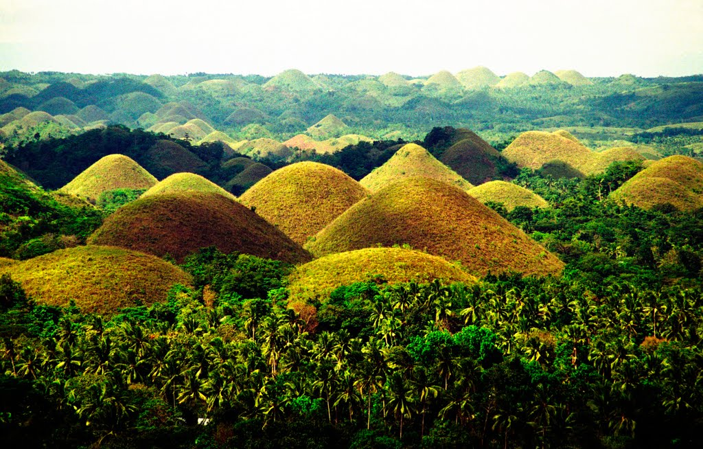 Philippines The Pearl Of The East Chocolate Hills In Bohol