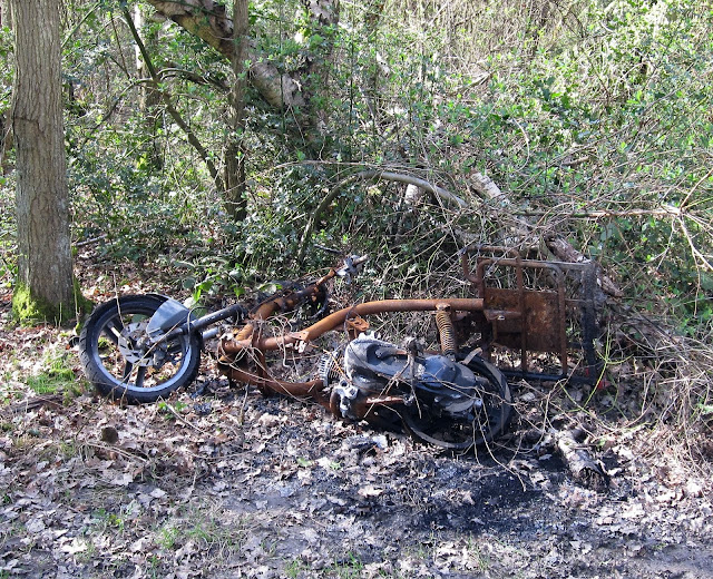 A discarded bike in Sparrow Wood.