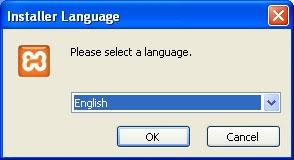 Gambar 2 Pilihan Bahasa