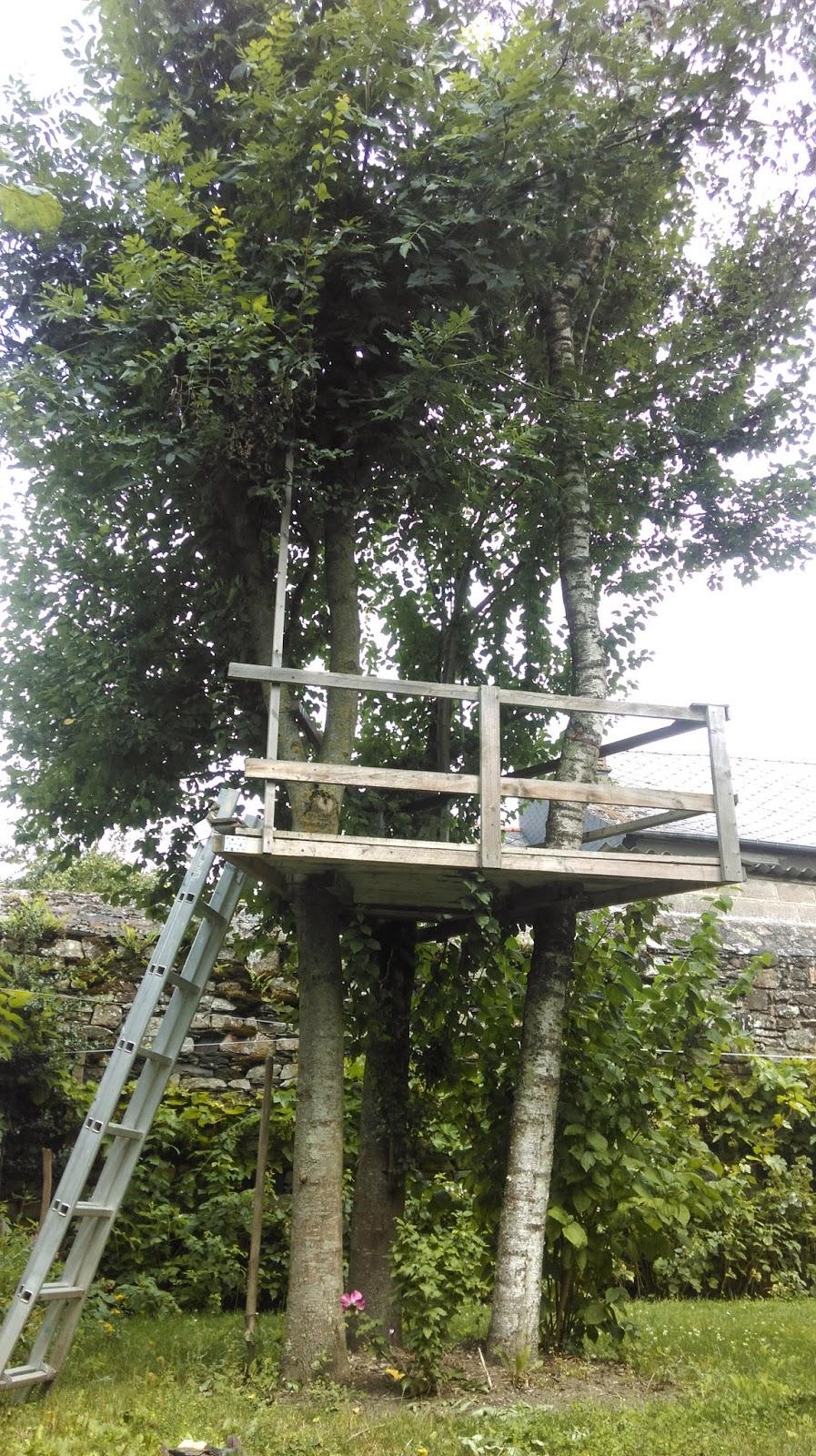 Redirecting - Construire une cabane dans un arbre ...