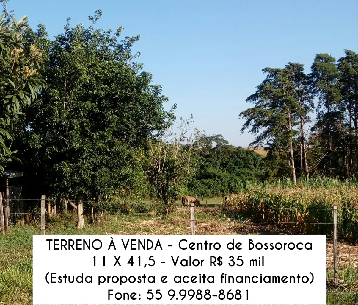 Classificados: TERRENO À VENDA