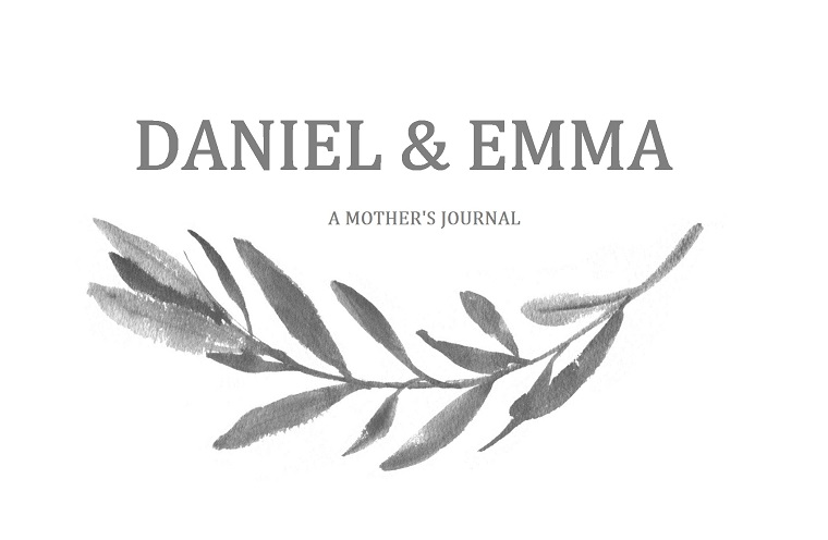 Daniel and Emma: A mother's journal