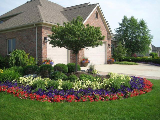 El cuidado de las plantas y el jardin 30 06 13 7 07 13 for Canteros de jardin