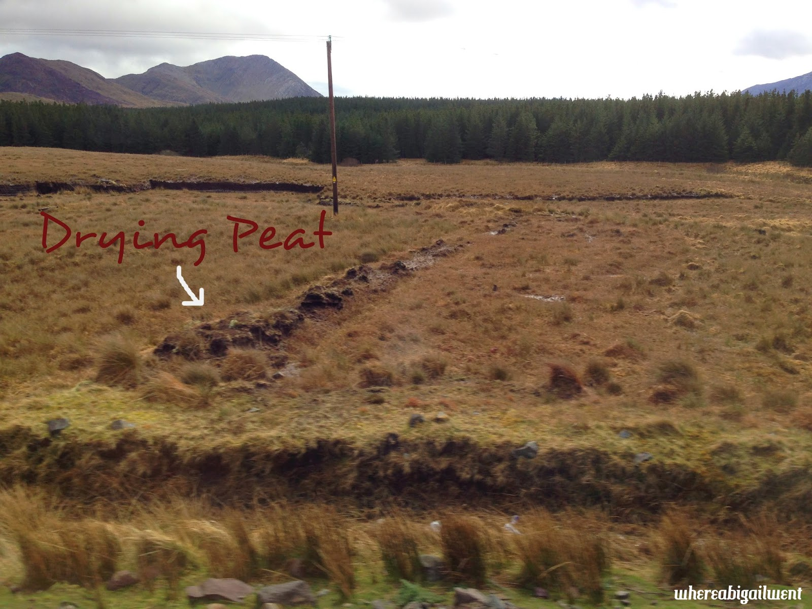 Cutting and drying peat