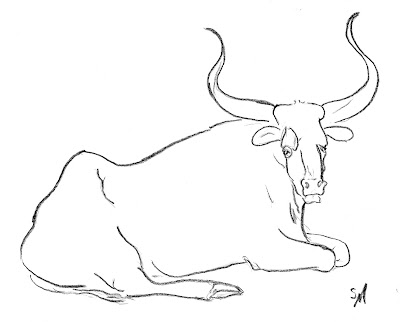 ox, animal, bull, study, sketch, drawing, line-drawing, art, arte, quick, S. Myers, Sarah Myers, cattle, horns, strong