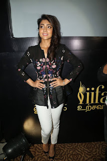 Actress Shriya Saran Stills in Jeans at IIFA Utsavam Press Meet Event 2015  0020