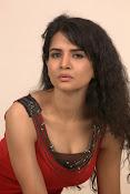 Ritu Sachdev latest glam pics-thumbnail-8
