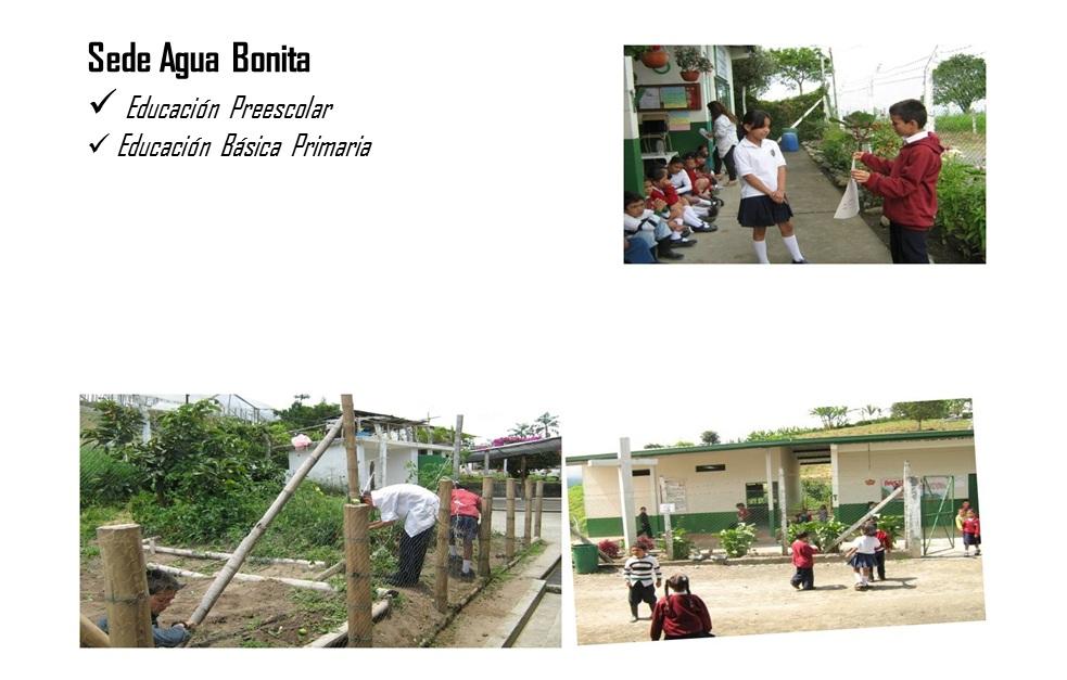 Diario pedag gico practica rural for Villa bonita violeta