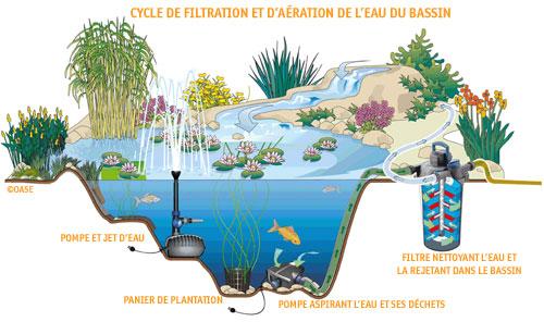 Milketounette et l 39 aquaponie milketounette brindherbe for Pompe pour bassin a poisson