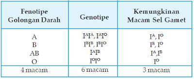 Hubungan antara Fenotipe Golongan Darah Sistem A,B,O, Genotipe dan Kemungkinan Macam Gamet