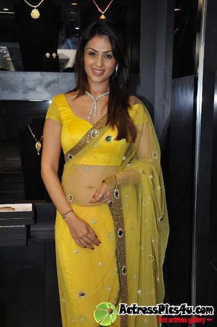 Anjana Sukhani Saree Navel