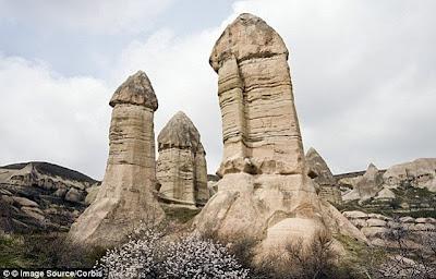 rock hard circumsized penis