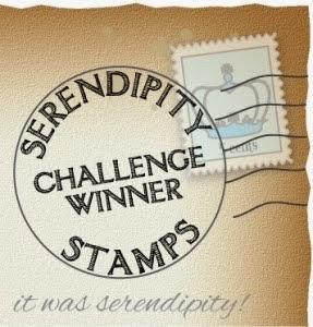 Serendipity Challenge Winer