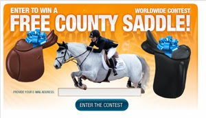 WIN A SADDLE BANNER Khataba+ USDF Dressage Arab/Trakehner Stallion Free Jumping