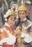 หนังจีนชุดหมวด ซ-ถ