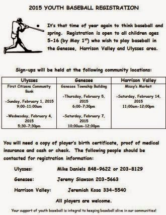 2015 Youth Baseball Registration