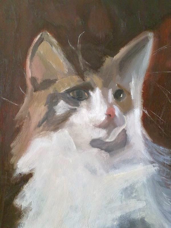 cabeza de gato al oleo sobre papel