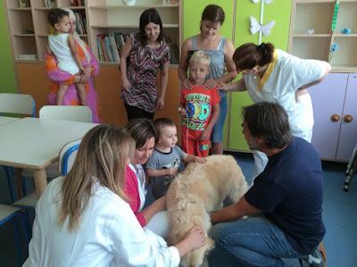 buongiornolink - Accesso agli animali dei pazienti l'ospedale di Treviglio apre le porte