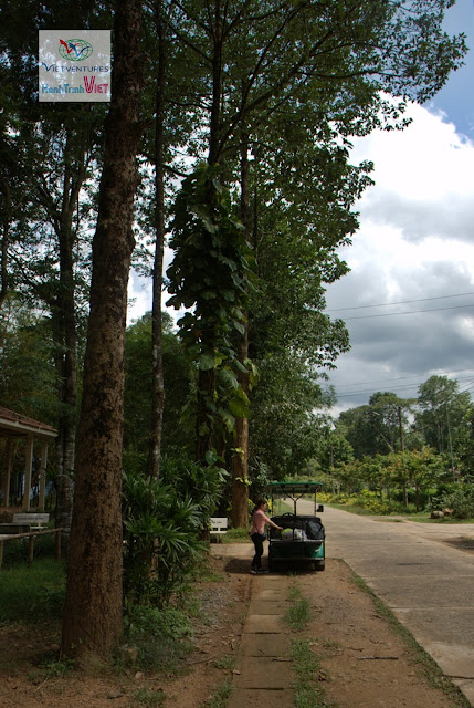 Khám phá Rừng quốc gia Nam Cát Tiên