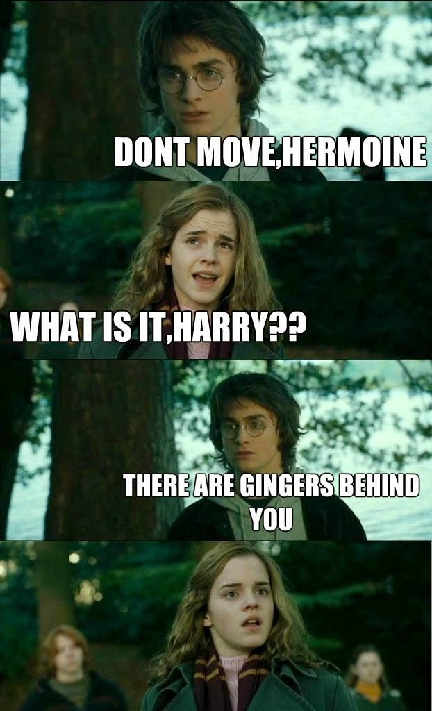 Funny Harry Potter And Hermione Memes : Meme harry potter hermione horny
