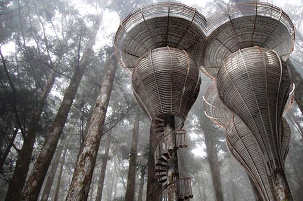 Rumah Pohon Lord of The Rings Bukan Khayalan