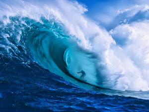 موج البحر حياة