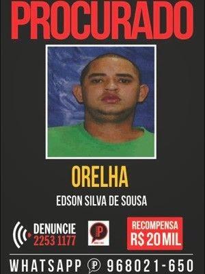 Orelha fujona vale recompensa de R$ 20mil no Rio de Janeiro
