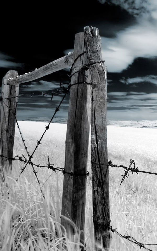 Dark Wood Fence Barbwire  Galaxy Note HD Wallpaper