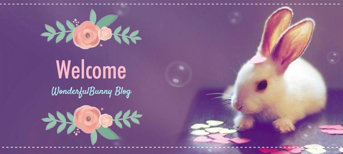 Wonderful Bunny blog