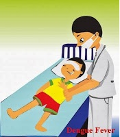 dengue-fever-causes-treatment-hindi
