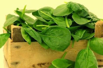 Fakta Sayuran Hijau Baik Untuk Jantung