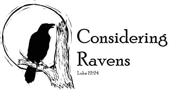 Considering Ravens