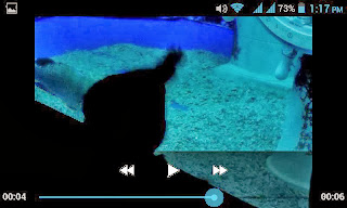 Google Photos Video Player Interface