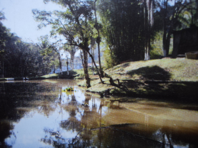 paissagem com o rio